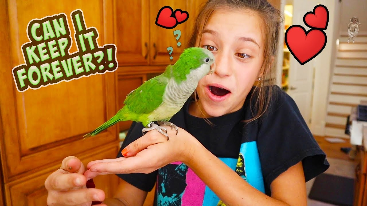 A NeW PeT FOR JaYLA?! CAN SHE KEEP IT?!