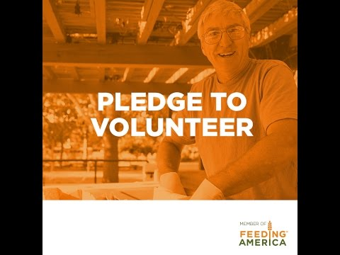 A message to volunteers from our CEO