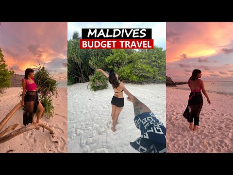Maldives On A Budget - Travel In 2021 From India - Our Fulidhoo Story (diving With Sharks)  Travel & Events