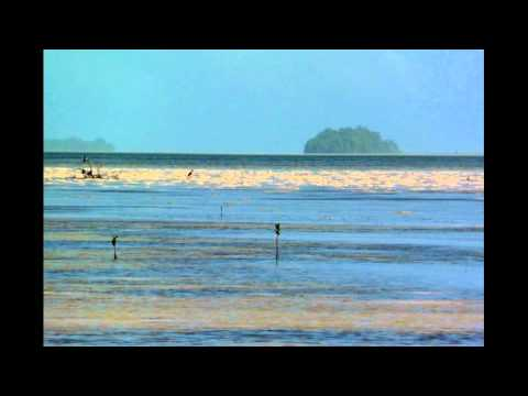 Palau   Large