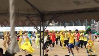 長崎県立佐世保北高 体育祭 2014 黄色ブロック