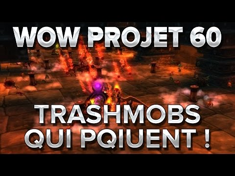 WoW Project 60 #18 : Trashmobs qui piquent !