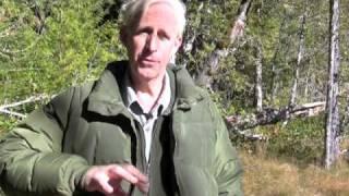 Favorite Hiking Trails at Mt. Rainier National Park