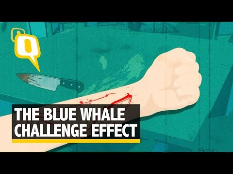 Blue Whale Challenge: Student in Indore Attempts Suicide | The Quint