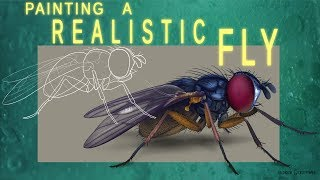Animation Stuff: Painting a Realistic Fly
