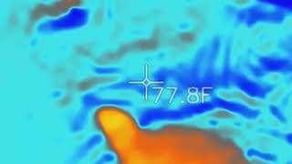2/11/19 4:05am Using thermal camera on my bed to measure frequencies burning right thigh