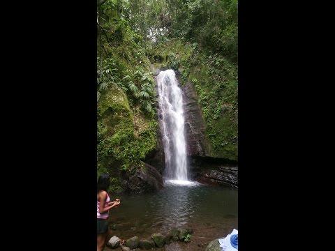 Fallen Edge Falls Bowden Hill Falls Trip Vlog 1