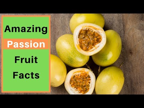 Top 40 Amazing Passion Fruit Facts Interesting Passion Fruit Facts