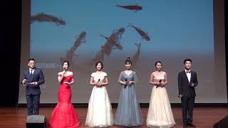 【国大春晚2019】-一代一路主题猪年春节联欢晚会