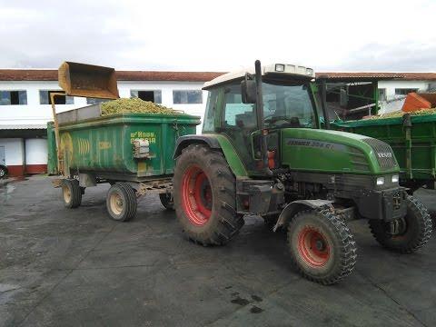   Vendimia 2015 en Pedro Muñoz   Fendt 308c   Landini Powerfarm 100  Jovenes Agricultores  