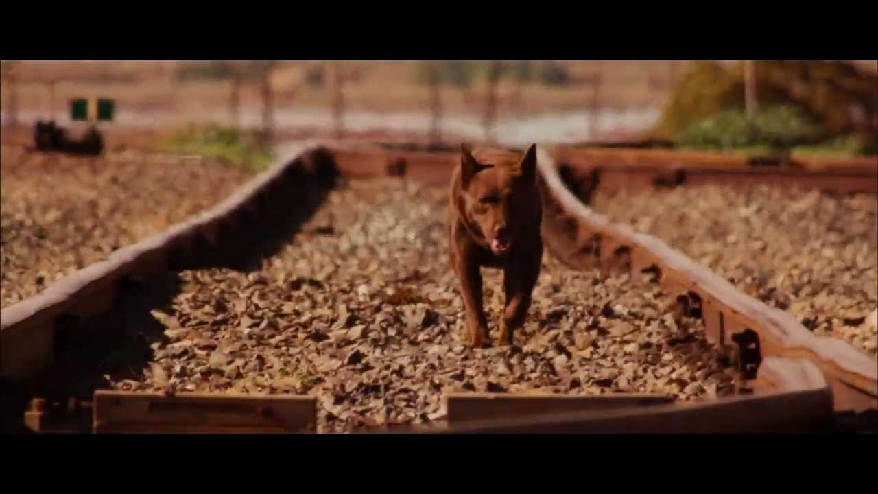 RED DOG (2011) - Official Trailer / HD Version