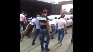 Лимузин отказал на чеченской свадьбе