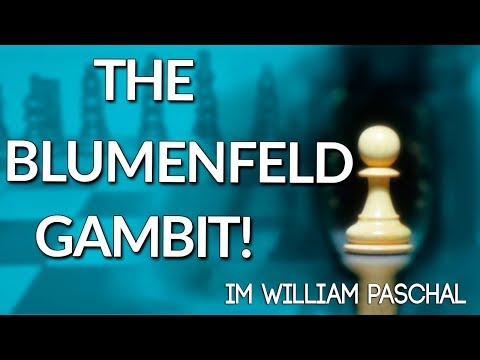 The Blumenfeld Gambit 📖 Best Chess Openings - IM William Paschall