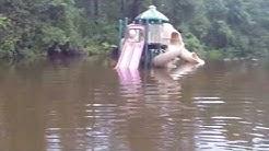 South Carolina Flood 2015 Clarendon County area footage