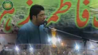 Ya Imam-e-Raza - Istigaasa by Mir Hasan Mir - ImamBargah Ali Reza