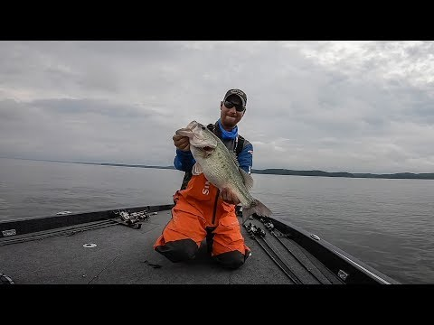 Kentucky Lake | Day 2 Highlights