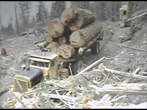Old Logging Footage, Part II