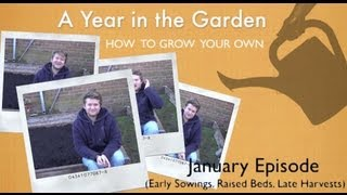 A Year In The Garden - How To Grow Your Own - January