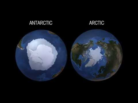 What Does Record-High Antarctic Sea Ice Say About Climate Change? | Video