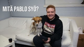 Useimmin kysytyt kysymykset Pablosta!