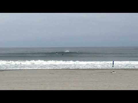 Dolphins leap through the waves at Jersey Shore beach