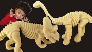 공룡화석 발굴 놀이!! 공룡 화석 키트 장난감놀이 공룡뼈가 나왔다 Dinosaur bone toy review
