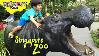 Safari Adventure in SINGAPORE ZOO , River Safari and SEA Aquarium - playtime toys for kids