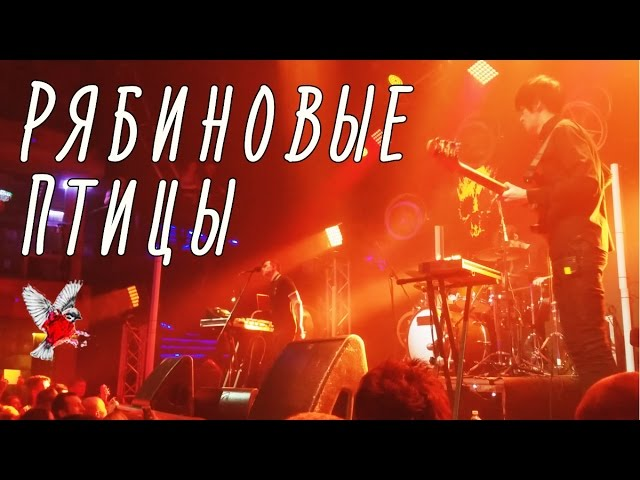 Dolphin | ??????? - ????????? ????? (Club RED, 18.03.17)
