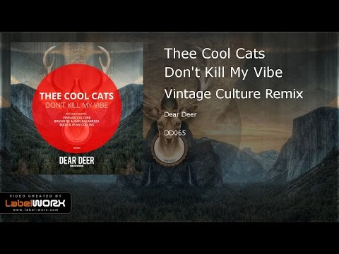 Thee Cool Cats - Don't Kill My Vibe (Vintage Culture Remix)