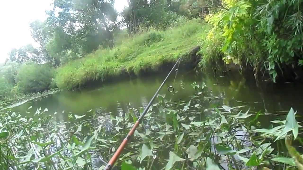 Ловля голавля в сентябре на речке