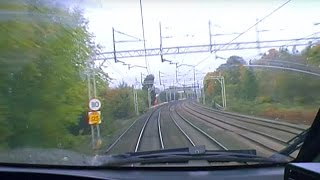 Why Do Leaves Cause Train Delays? - Bang Goes The Theory - Brit Lab - BBC