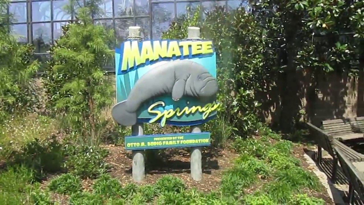 Cincinnati zoo and botanical garden video 13 manatee - Cincinnati home and garden show 2017 ...