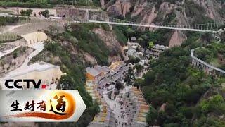 《生财有道》 20200807 夏日经济系列——甘肃庆阳:小镇办起红火的乡村游  CCTV财经