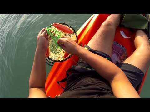رحلة صيد بقارب الكاياك بالبحرين - Kayak Fishing in Bahrain