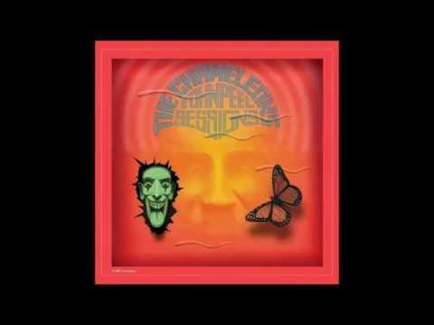 Things I Wish I'd Said - The Chameleons (John Peel Session 1981)