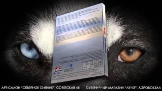 Beringia 2013 DVD