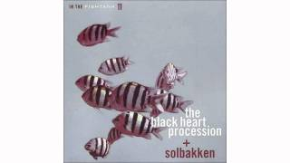 The Black Heart Procession + Solbakken - A Taste of You and Me - In The Fishtank 11