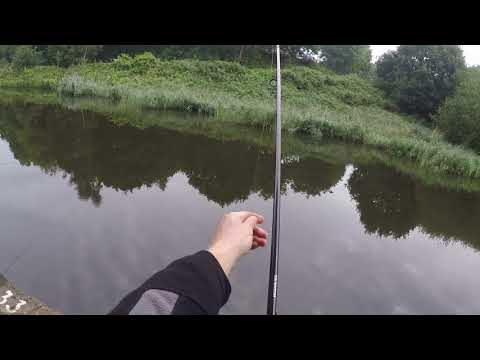 Sankey Canal A 15lbs Carp
