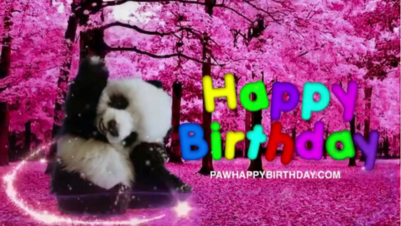 Happy Birthday Panda Bear Virtual Greeting Card Youtube