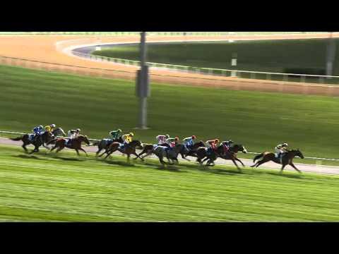 DWCC Meydan Racecourse 28-1-16, Race 7 The Meydan Hotel Handicap