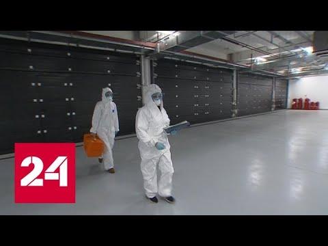 Коронавирус в России: последние данные от оперативного штаба - Россия 24