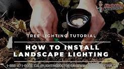 Landscape Lighting Installation Tree Lighting Tips