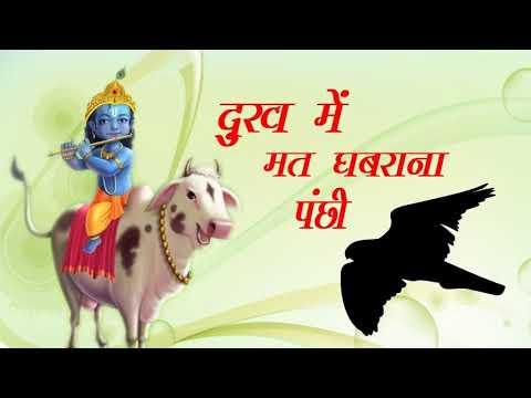 भजन : दुःख में मत घबराना पंछी    Dukh me Mat Ghabrana Panchhi   Madhuri Pathak
