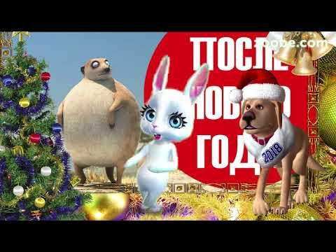 Зайка ZOOBE 'Отгуляли Новый Год!' - Как поздравить с Днем Рождения