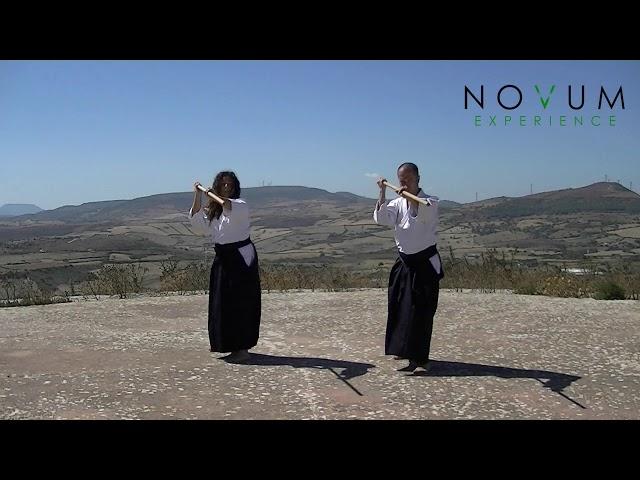 Sanjuichi no Jo Kata - Aikido Novum Experience - 合氣道 - 合氣杖 - 三十一の杖形