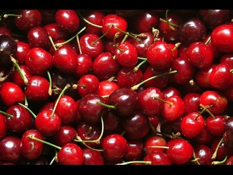Save HomeHack: The BEST Way to Pit Cherries! Snapshots