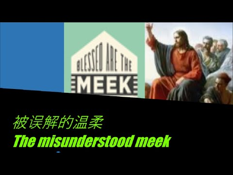 The Misunderstood Meek