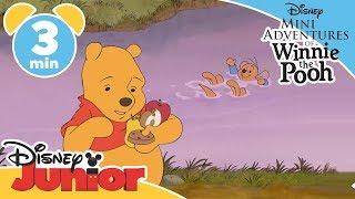 The Mini Adventures of Winnie the Pooh | Roo Goes Swimming | Disney Junior UK