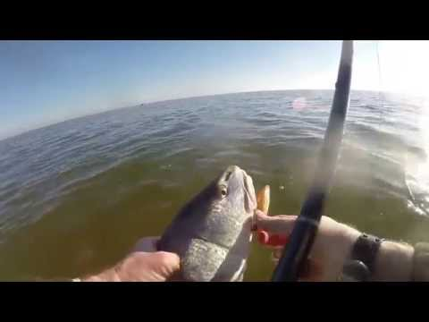 GoPro wade fishing Baffin Bay, TX