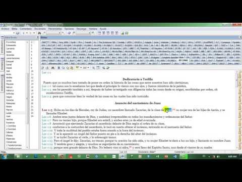 NUEVO DICCIONARIO BIBLICO CERTEZA PDF